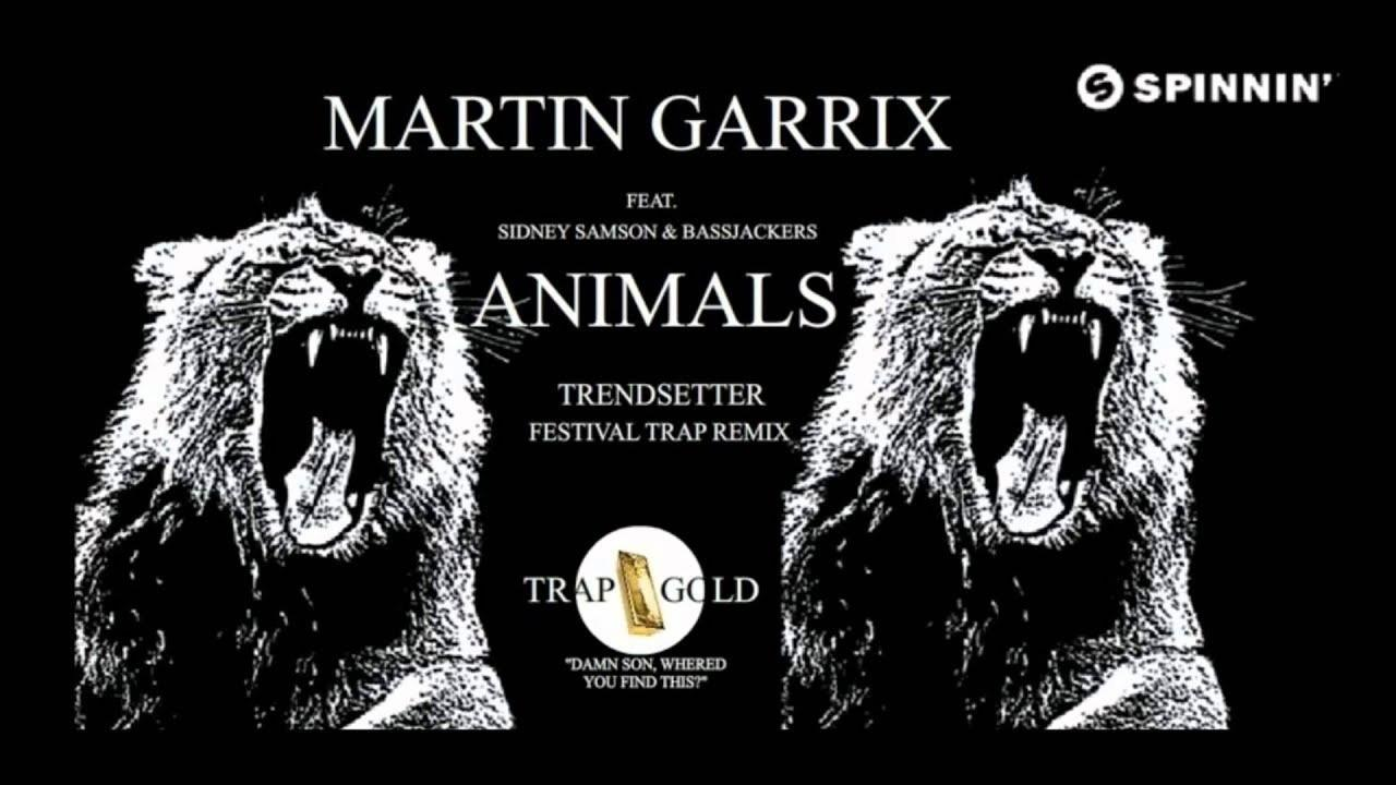 Martin Garrix _ Animals